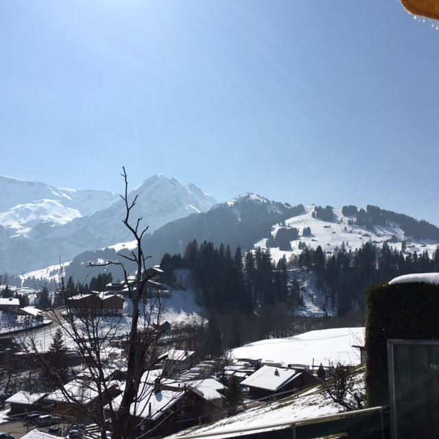 12. / 13.3.2016 Skiwochenende Adelboden